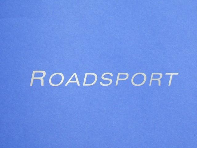Decal - Bonnet - Roadsport - Silver