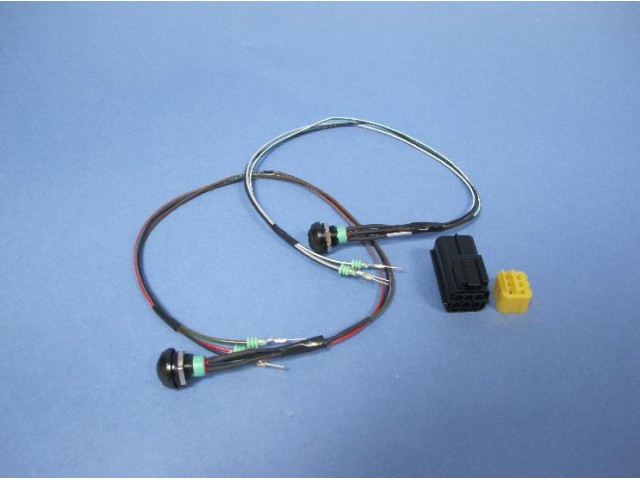 Indicator Switch Loom inc. Switches - R300