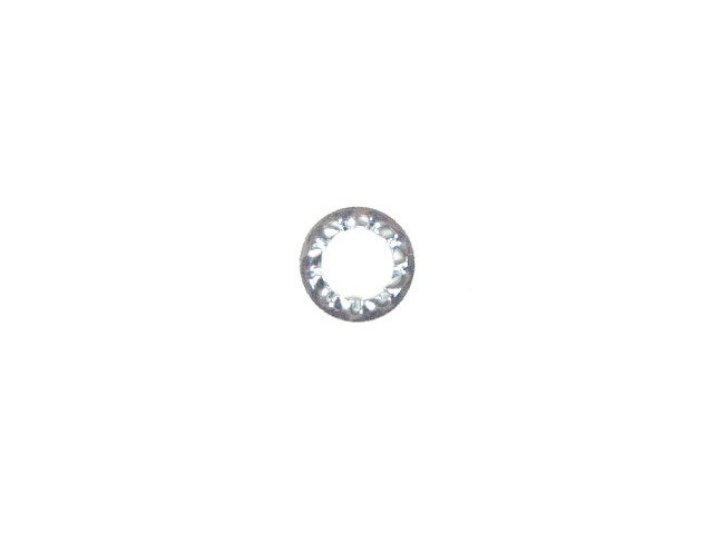 M6 Shake Proof Washer (Pack of 10)